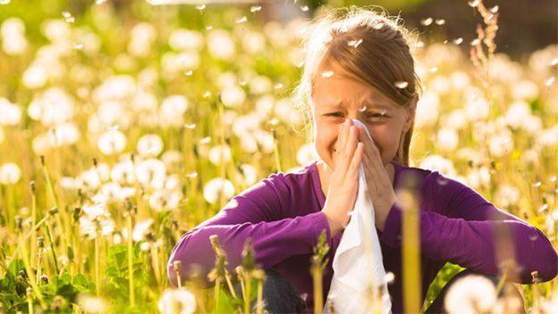 medicamentos-sin-receta-para-la-alergia-campo-de-flores