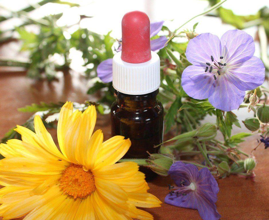 remedios-homeopaticos-los-mejores-remedios-homeopaticos
