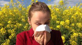 Los mejores remedios caseros para la alergia de primavera
