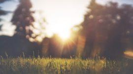 Alergia al sol: causas, síntomas, tratamiento y remedios caseros