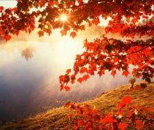 20 consejos para cuidar la salud en otoño