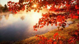10 consejos para cuidar la salud en otoño