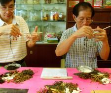 Tratamientos de la medicina china, para las enfermedades de la piel. (II).