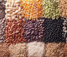 Cuáles son las semillas más saludables