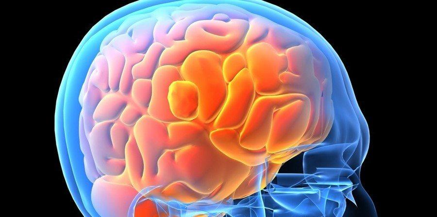 neurotoxicidad-central-que-es-y-como-afecta-a-la-memoria-cerebro