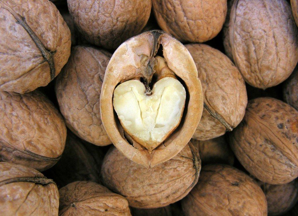 nueces-propiedades-beneficios-y-cuando-tomarlas-salud