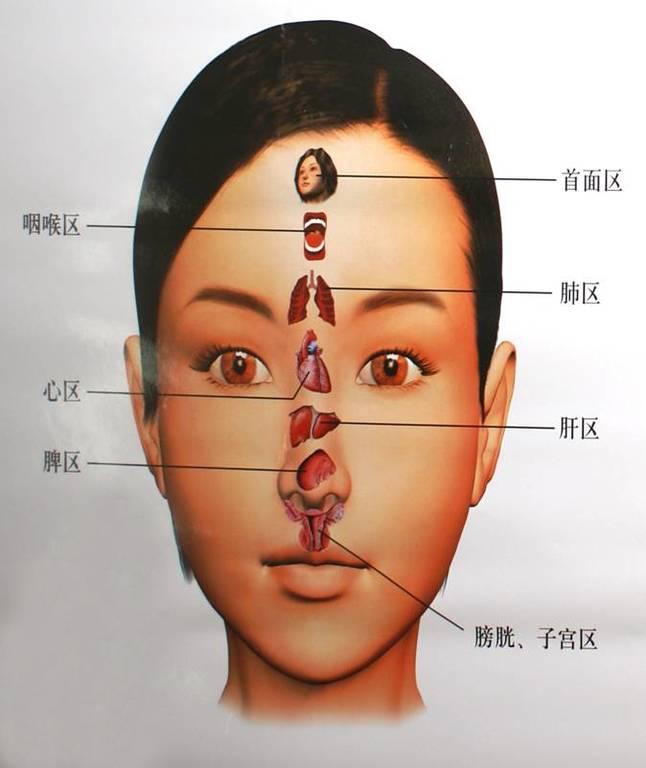medicina-china-diagnostico-de-la-cara-segun-neijing-los-5-colores-distribuicion