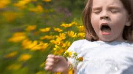 Alergias o problemas de piel (cuida tus pulmones)