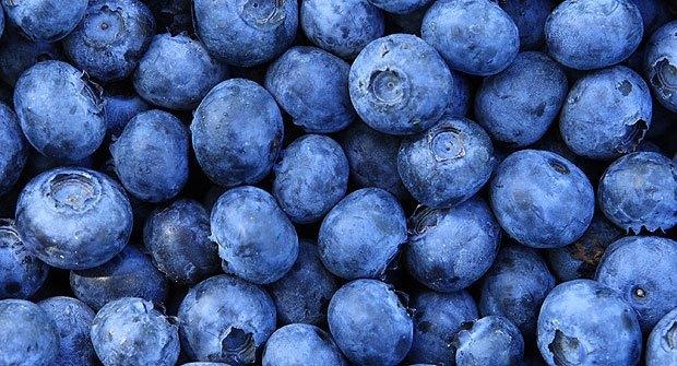 arandano-azul-y-sus-propiedades-antioxidantes