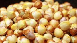 Las nueces del Gingko | Propiedades y beneficios
