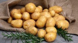 Patatas | Propiedades, precauciones y cómo cocinarlas