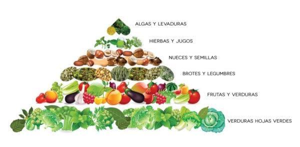 que-es-ser-vegano-que-alimentos-puedo-comer