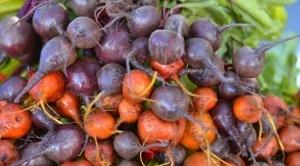 4-verduras-que-se-pueden-plantar-en-la-cosecha-de-otoño