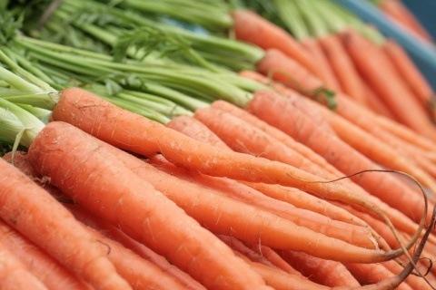 4-verduras-que-se-pueden-plantar-en-la-cosecha-de-otoño-zanahorias