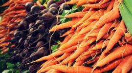 10 verduras que se pueden plantar en la cosecha de Otoño