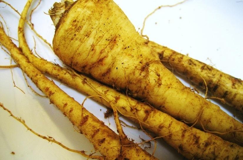 las-7-verduras-de-invierno-para-anadir-al-plato-chirivias
