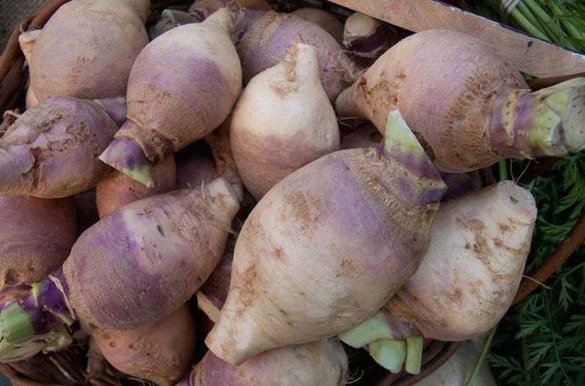 las-7-verduras-de-invierno-para-anadir-al-plato-rutabaga