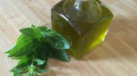 Albahaca y Aceite de albahaca: Propiedades y beneficios