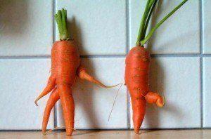 las-10-frutas-y-verduras-con-aspecto-poco-apetitoso-que-os-van-a-hacer-mas-felices-zanahorias-bailarinas
