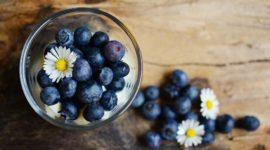 El arándano azul: propiedades, beneficios y cómo tomar