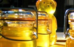 Miel, el medicamento natural más completo