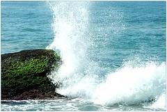 """Agua de mar, la sangre marina """"Método Quinton"""""""