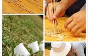 Los efectos de la soja, sobre los problemas de próstata
