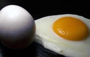 La alta calidad de proteínas contenidas en los huevos, incrementan la fuerza y la energía