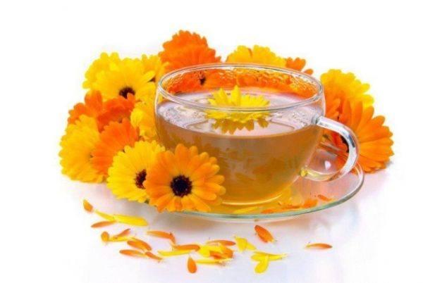aceite-calendula-propiedades-medicinales