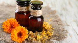 Caléndula: para qué sirve y usos medicinales