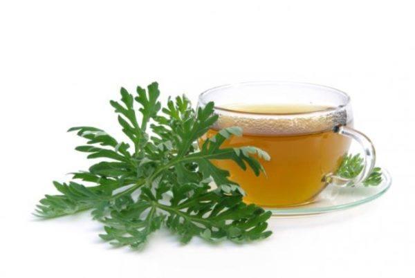 hierba-de-san-juan-o-artemisa-propiedades-medicinales-y-su-cultivo-como-se-toma
