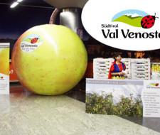 La importancia de la fruta y del frutero
