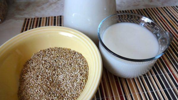 alpiste-propiedades-y-beneficios-leche