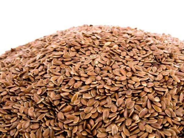 alpiste-propiedades-y-beneficios-semillas