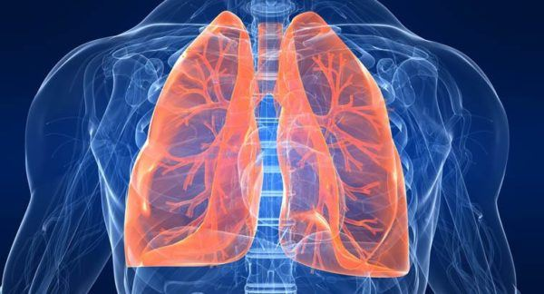 espino-blanco-usos-internos-afecciones-respiratorias