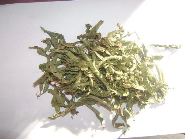 hierba-luisa-como-tomar-hierba-luisa-deshidratado