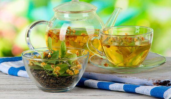 bajar-barriga-ayuda-las-plantas-naturales-te