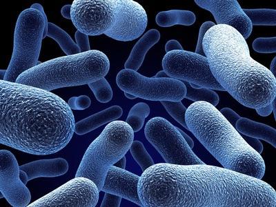 enantyum-contraindicaciones-bacterias