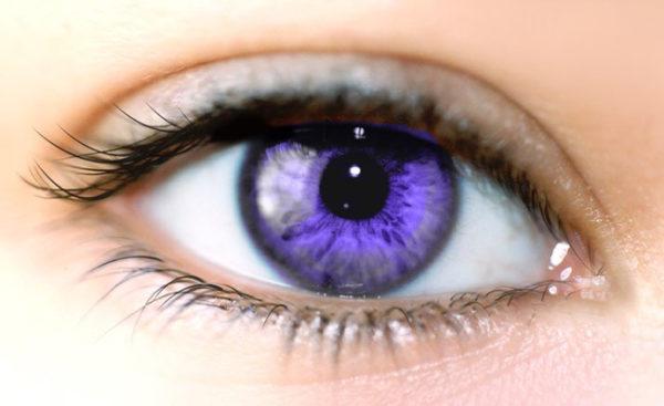 ginko-biloba-beneficios-ojos