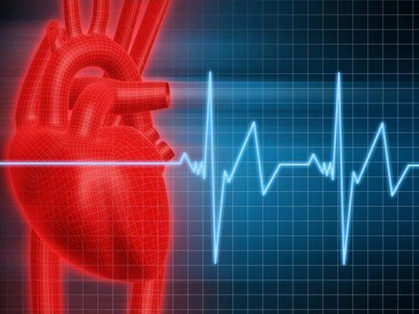 Efectos secundarios de la L-Carnitina – Taquicardia