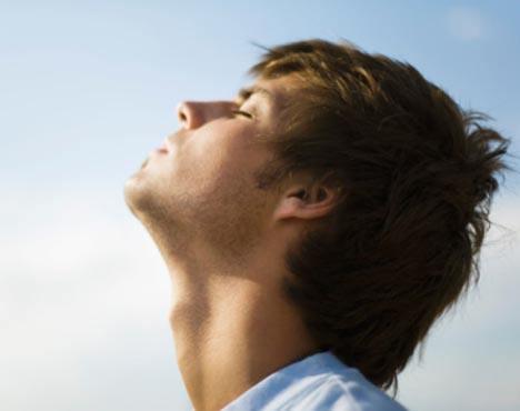 malva-propiedades-y-beneficios-respirar