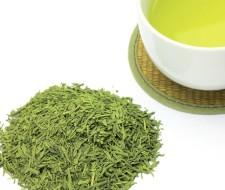 Té verde: propiedades y beneficios para adelgazar