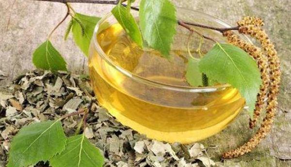 Abedul-propiedades-y-beneficios-preparar-aceite-de-abedul-casero