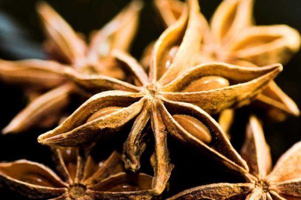 anis-estrellado-aceite-esencial-salud