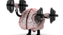 Los mejores ejercicios para la memoria