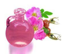 Rosa Mosqueta: Beneficios y Usos