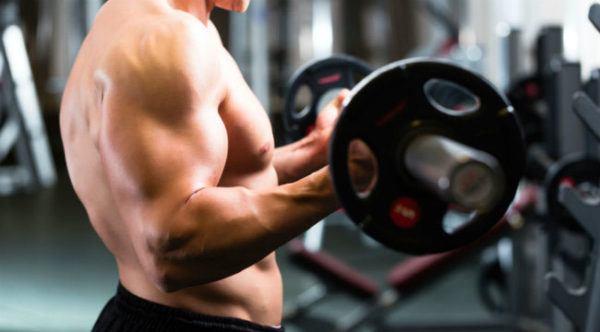 los-mejores-ejercicios-para-biceps-recomendaciones
