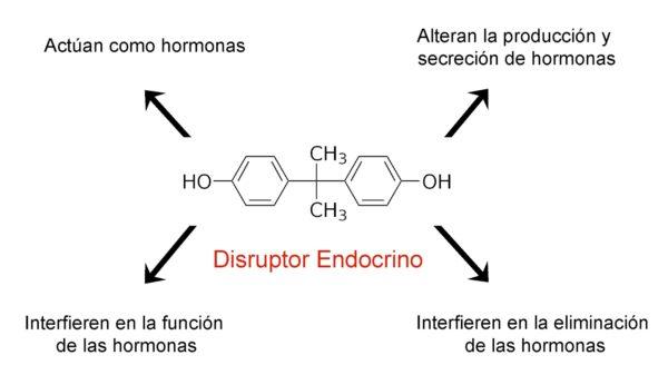 Disruptores-endócrinos-que-son-explicacion
