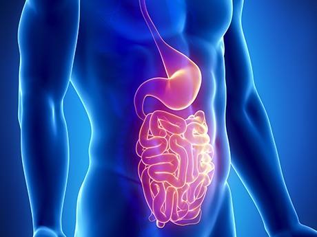 anis-estrellado-propiedades-y-beneficios-buena-digestion