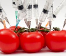 Disruptores endocrinos: ¿qué son y cómo limitarlos en nuestros platos?